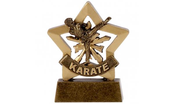 Judo & Karate